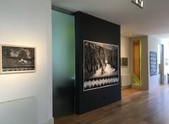 Mesmerizing, Sigrid van Woudenberg