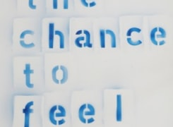 The Chance to Feel, Anne-Lise Coste