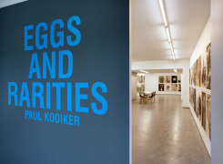 Eggs and Rarities, Paul Kooiker