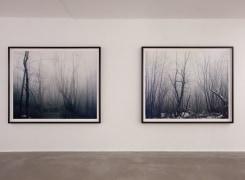 Winterreise, Edwin Zwakman, Axel Hütte, Andrei Roiter, Ali Kazma