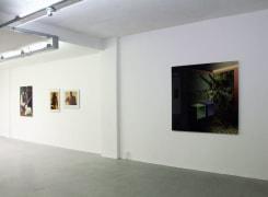 Fool's Paradise, Tom Woestenborghs