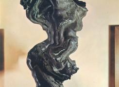 Skulptura, Koen Hauser