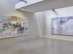 Through Painters' Eyes, Ioan Sbârciu, Hernan Bas