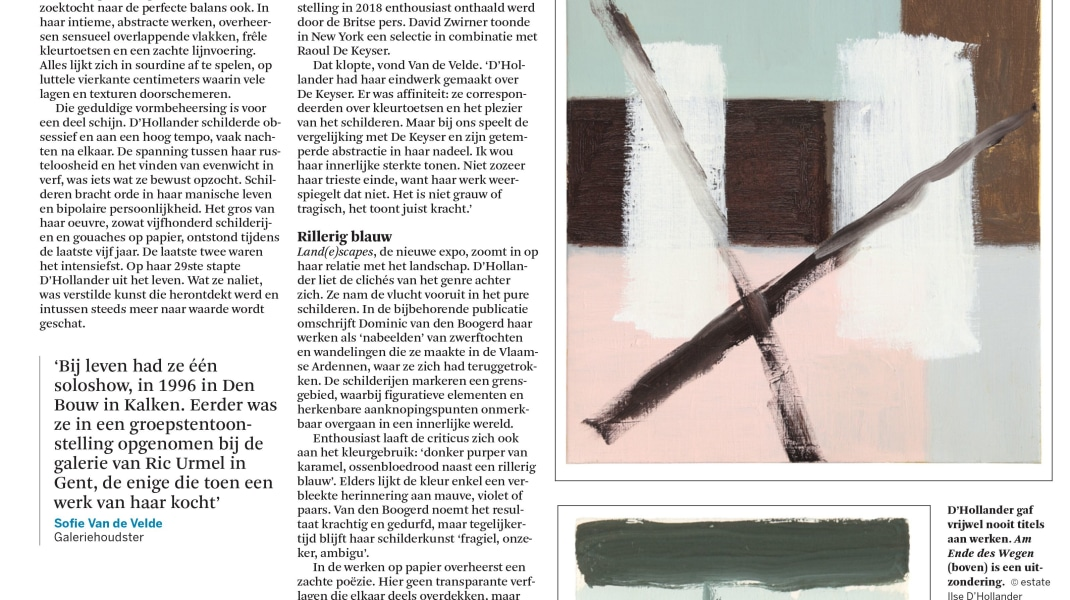 Ilse D'Hollander, Review of the solo exhibition in the Flemish newspaper 'De Standaard'