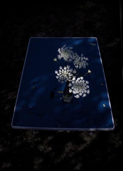Elspeth Diederix, Blue table