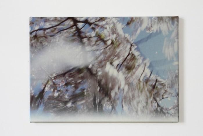 Marijke van Warmerdam, Bloesem sneeuw
