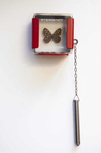 Leon van Opstal, Emergency Pollination #65