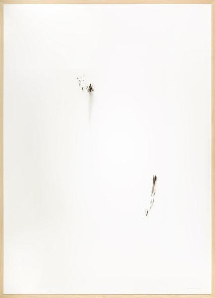 herman de vries, untitled (27-1-2018)