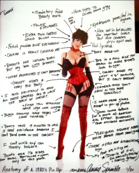 Anatomy of a pinup