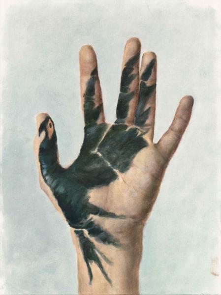 Jasper Hagenaar, Feniks hand
