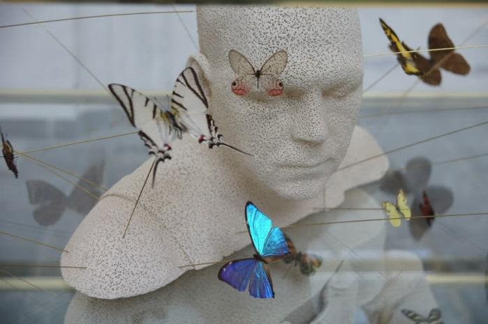 Guido Geelen, z.t. Christophe - vlinderpopulatie Zuid-Amerika