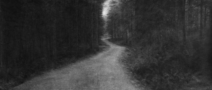 Levi van Veluw, Stretching Universe part 7 (Forest)