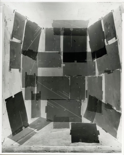 Femke Dekkers, Untitled 1 (during exposure time)