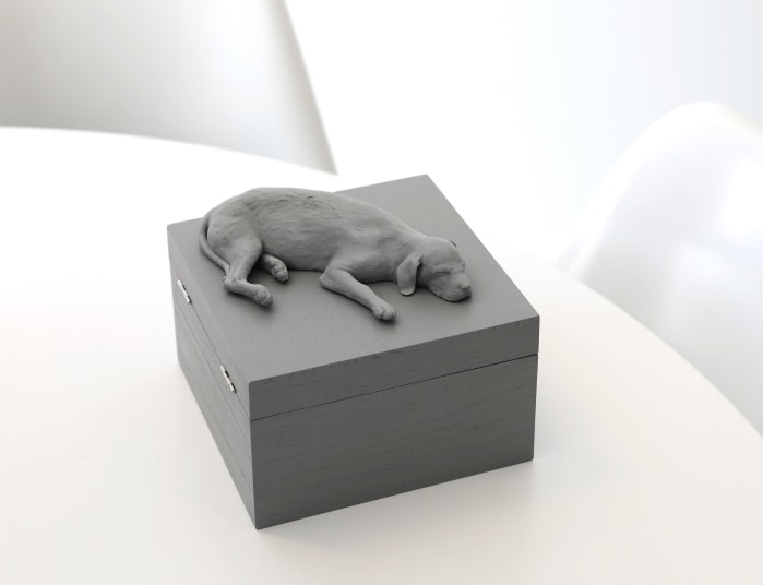 Hans Op de Beeck, Sleeping Dog