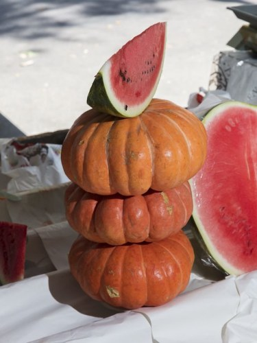 Composition with pumpkins & melon Brazil