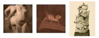Paul Kooiker, Nude Animal Cigar 18