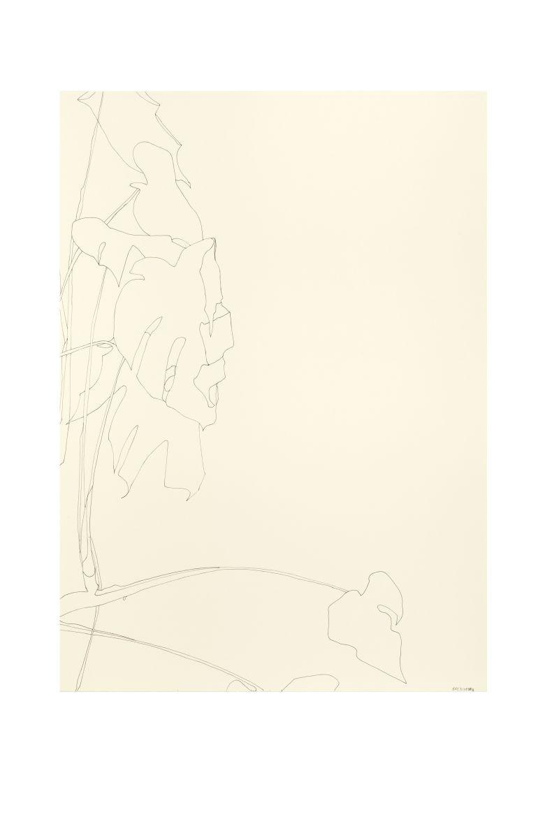Untitled (31082018)