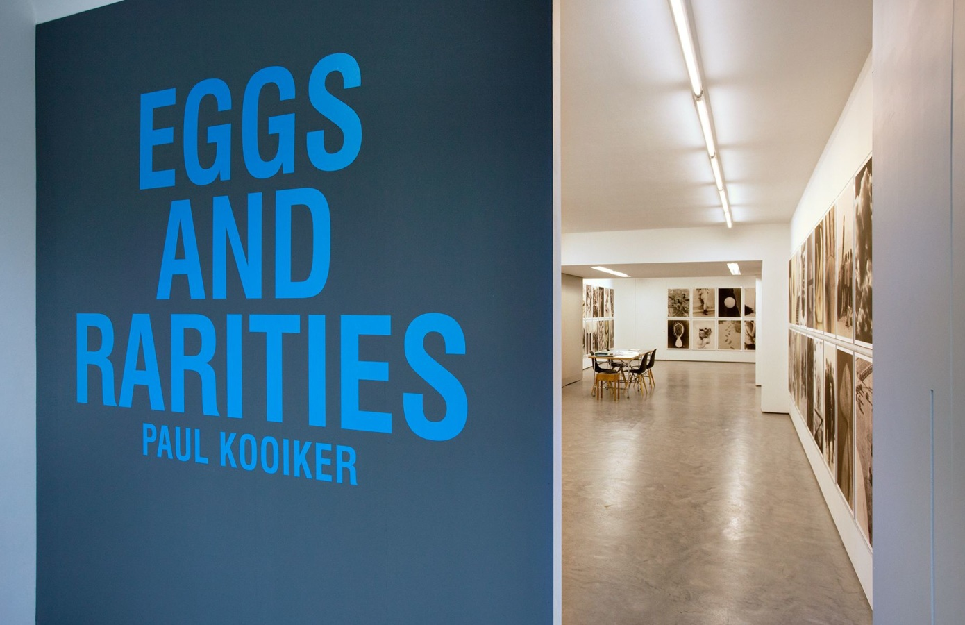 Eggs and Rarities, Paul Kooiker,