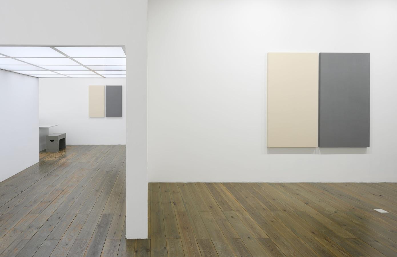 Painted / Unpainted - Alan Charlton, Alan Charlton,