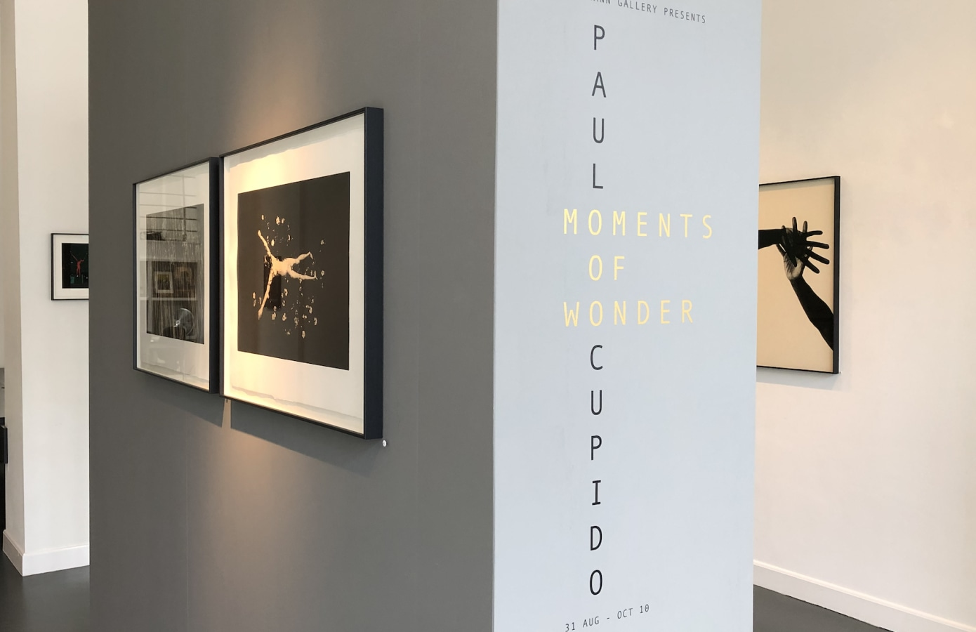 Moments of Wonder, Paul Cupido,