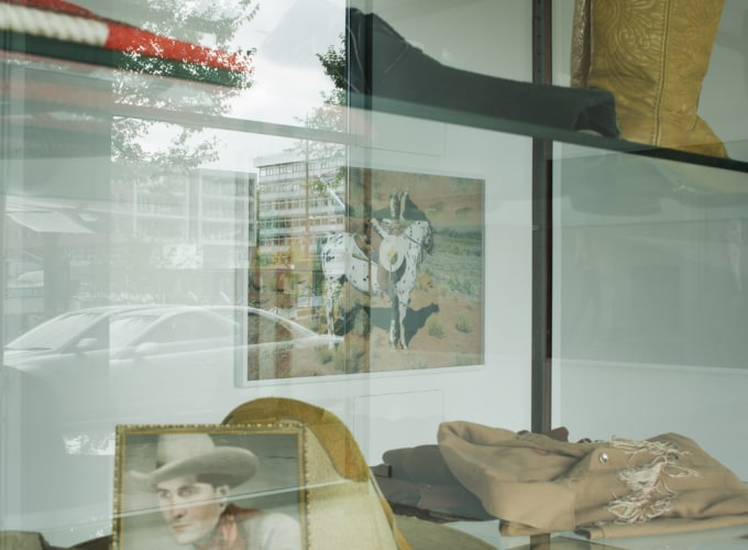 She Could Have Been a Cowboy, Anja Niemi,