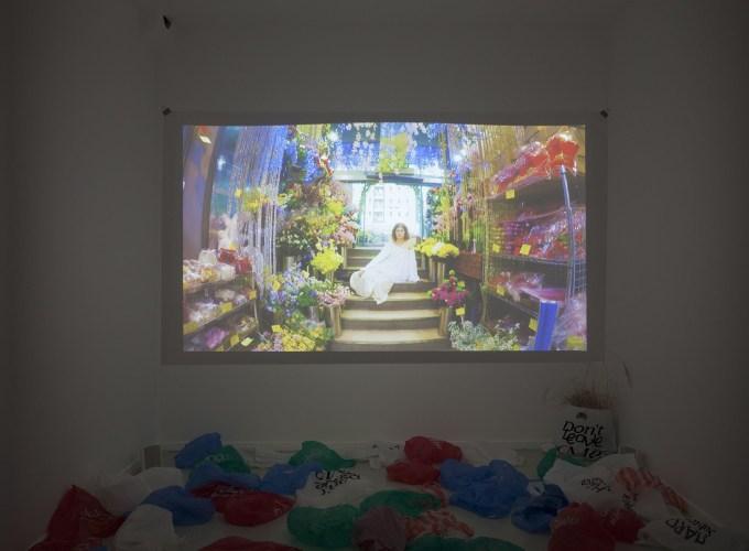 Software Garden, Rory Pilgrim,
