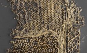 Diana Scherer, Galerie Caroline O'Breen