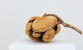 Alberto Scodro, Kristof De Clercq gallery