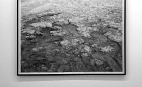 Ilanit Illouz, Galerie Fontana