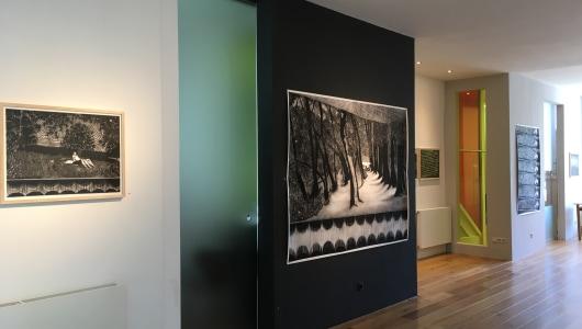 Mesmerizing, Sigrid van Woudenberg, Galerie Helder