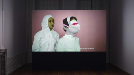 PINK SLIME CAESAR SHIFT, Jen Liu, Upstream Gallery