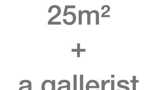 25 m2 + a gallerist, Nokukhanya Langa, Galerie van Gelder