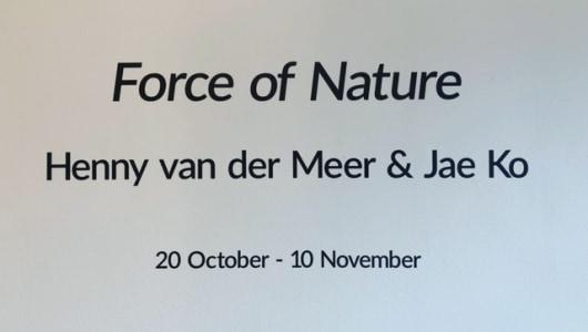 FORCE OF NATURE, , Galerie Roger Katwijk