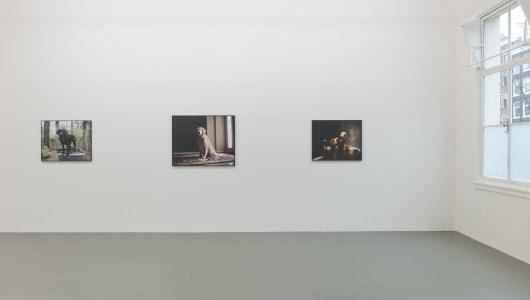Retrieved, Charlotte Dumas, andriesse eyck galerie