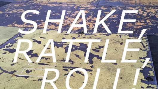 SHAKE RATTLE ROLL!, Ide André, Koen Delaere, Gerhard Hofland