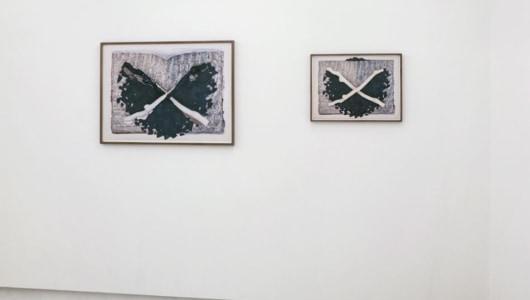 Collect . Re-order . System . Sequence . Stillness ILONA PLAUM, Ilona Plaum, galerie dudokdegroot
