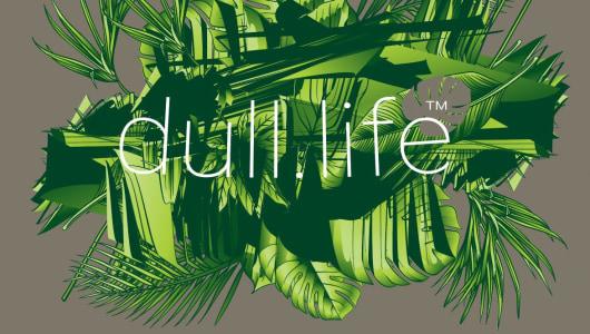 dull.life™- hack, hustle, historicize, Constant Dullaart, Upstream Gallery