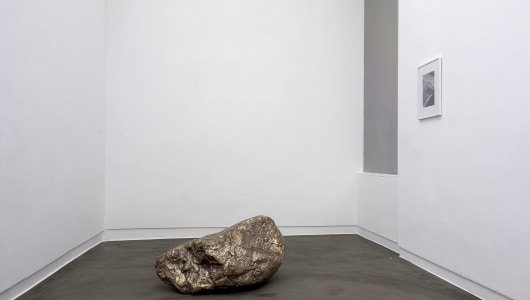 highway, Anya Gallaccio, Annet Gelink Gallery