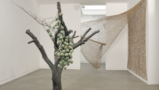 Anya Gallaccio, Anya Gallaccio, Annet Gelink Gallery