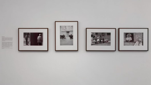 Ballenesque - a Retrospective, Roger Ballen, Reflex Amsterdam