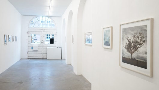 Ellen Kooi – Adopted Sites, Ellen Kooi, Torch Gallery