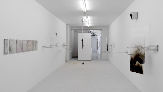 Adriano Amaral, Adriano Amaral, Galerie Fons Welters