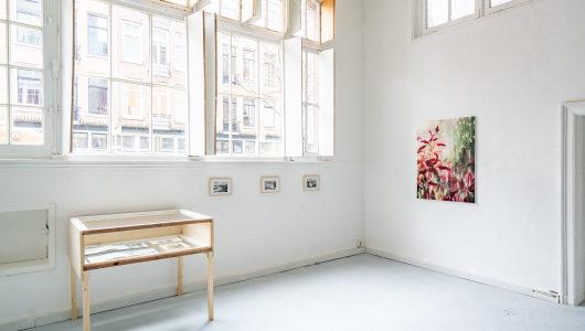 Lockdown Show #4, La Côte by Marijke van Seters, Marijke van Seters, Galerie Fleur & Wouter
