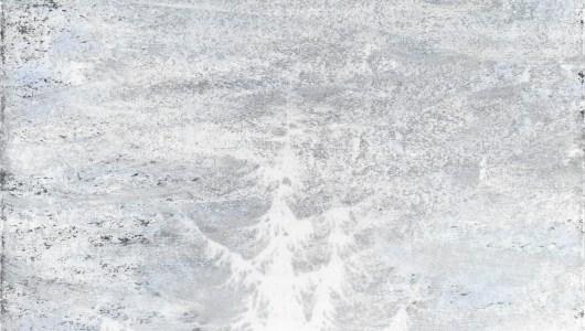 Sneeuwval, Sandra Kruisbrink, galerie dudokdegroot
