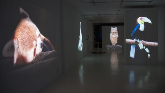 Longing for paradise, Marjan Laaper, NL = US Art