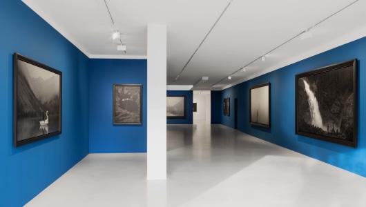 Erwin Olaf  | Im Wald, Erwin Olaf, Galerie Ron Mandos