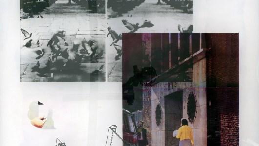 Art Rotterdam 2021, Tanja Engelberts, Maura Biava, Antoinette Nausikaä, Jaya Pelupessy, Satijn Panyigay, Galerie Caroline O'Breen
