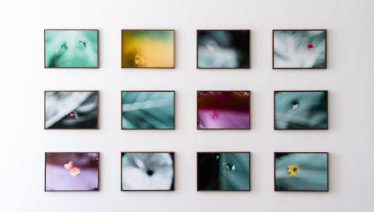 After Unseen, Marcel Wesdorp, Shigeo Arikawa, Hans Lemmen, Galerie Helder