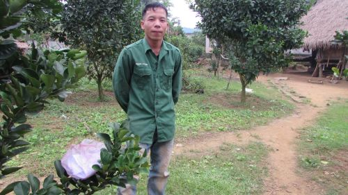 Binh Bui van