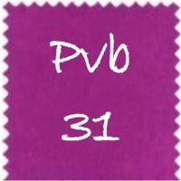 Pvb31